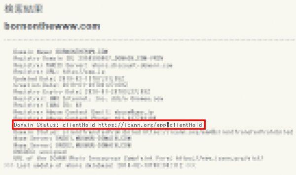 whois情報の検索結果のスクリーンショット(ドメインステータスがclientHoldになっている状態)
